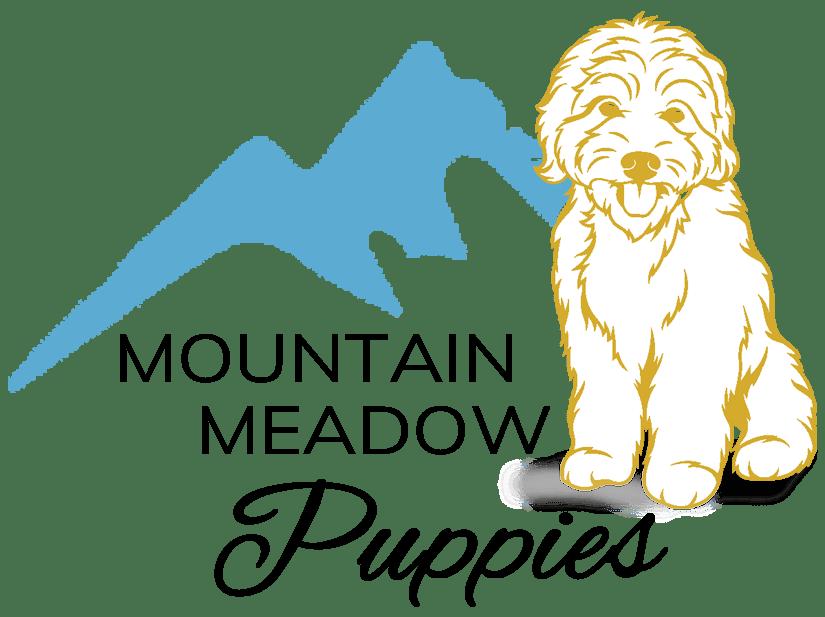 Mountain Meadow Puppies Logo edited 1 e1594245434818